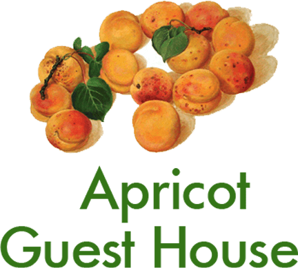 Apricot Guest House, Chychkan, Kyrgyzstan