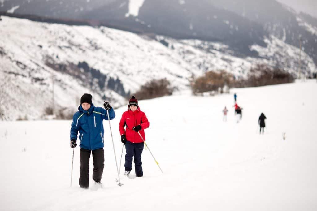 Winter Tours & Activities